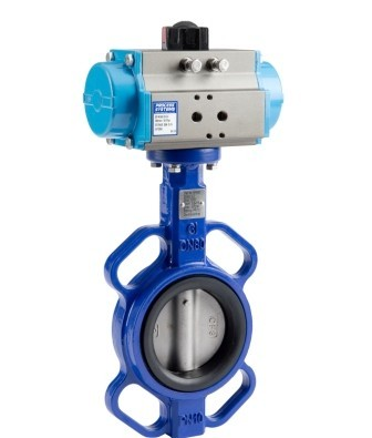 Cast Iron Double Acting Butterfly Valve with 304 Stainless Steel Disc