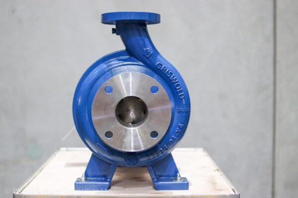 Griswold Bare Shaft ANSI Pump